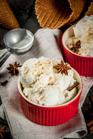 Cold Homemade Eggnog Ice Cream with Cinnamon and anise, on dark stone background, copy space Stock Photo
