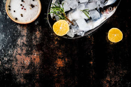 Fresh raw fish with rosemary, lemon and salt on dark rusty background, copy space top view Stock Photo