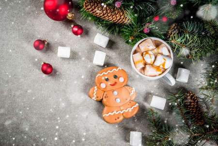 Traditional Christmas treat. Hot chocolate with marshmallow, gingerbread man cookie, fir tree branches and xmas holiday decorations copy space top view Stock Photo