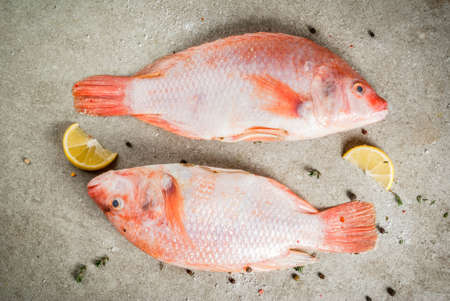Fresh raw fish pink tilapia with spices for cooking - lemon, salt, pepper, herbs, on gray stone table, copy space Banco de Imagens - 91036208