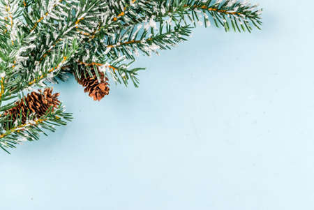 Christmas and New Year light blue background, greeting card concept, Christmas tree branches with pine cones and artificial snow, top view copy space