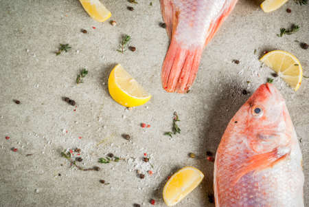 Fresh raw fish pink tilapia with spices for cooking - lemon, salt, pepper, herbs, on gray stone table, copy space Banco de Imagens - 92315968