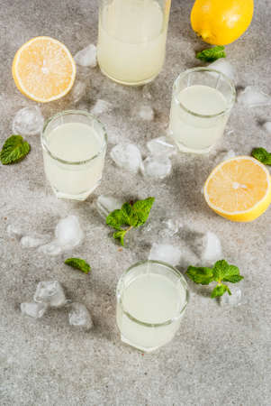Traditional italian alcoholic homemade beverage, lemon liqueur limoncello with fresh citrus, ice and mint, on grey stone table, copy space Standard-Bild