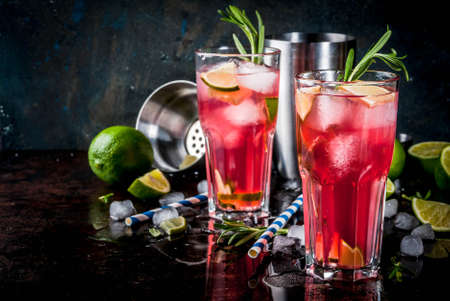 Refreshment alcoholic red cranberry and lime cocktail with rosemary and ice, two glass, dark background copy space