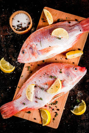 Fresh raw fish pink tilapia with spices for cooking - lemon, salt, pepper, herbs, on  black rusty metal table, copy space top view Banco de Imagens - 94197445