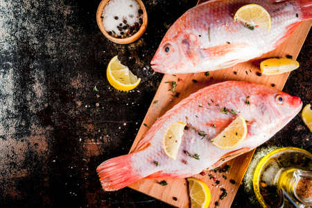 Fresh raw fish pink tilapia with spices for cooking - lemon, salt, pepper, herbs, on  black rusty metal table, copy space top view Stok Fotoğraf