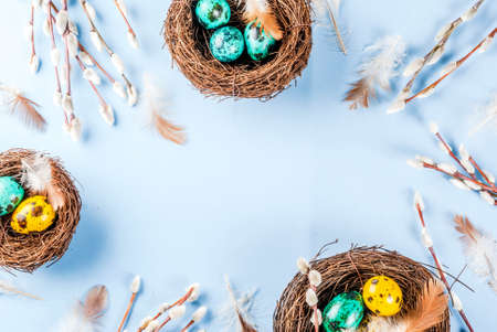 Easter background with birds nests, with eggs and spring flowers pussy willow, blue background top view copy space frame