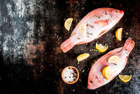 Fresh raw fish pink tilapia with spices for cooking - lemon, salt, pepper, herbs, on  black rusty metal table, copy space top view Stock Photo