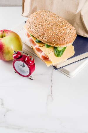 Healthy school food concept, paper bag with lunch, apple, sandwich, books and alarm clock on white kitchen table copy space Foto de archivo - 102490219