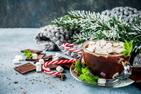 Homemade hot chocolate with mint, candy cane and marshmallow, light blue background with warm blanket, copy space