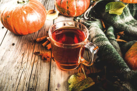 Spicy pumpkin tea, autumn hot drink glass cup, with pumpkins, cinnamon and spices on old rustic wooden background copy space