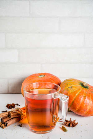 Spicy pumpkin tea, autumn hot drink glass cup, with pumpkins, cinnamon and spices on white marble background copy space