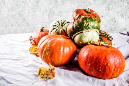 Autumn harvest, homemade organic little pumpkins on a table, on a linen tablecloth background,
