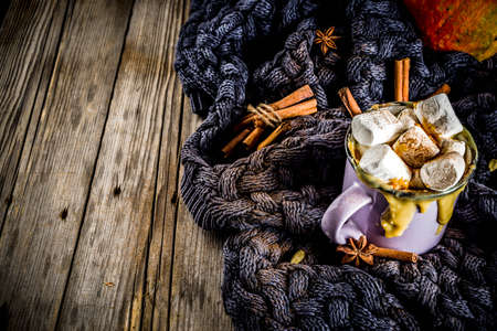 Autumn, winter drinks. Ideas for Christmas, Thanksgiving, Halloween. Hot spicy pumpkin white chocolate, with marshmallow, cinnamon, anise. With knitted plaid. Copy space, hands, top view