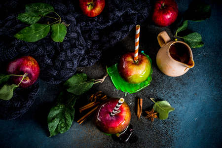 Traditional autumn delicacy, apples in caramel glaze. On a dark background, with apples, leaves, caramel sauce and a warm blanket. Copy space for text Banque d'images - 109763393