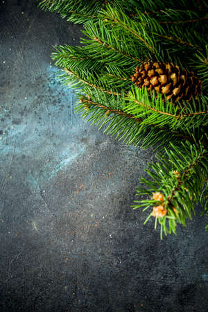 Dark background with christmas tree branches top view copy space