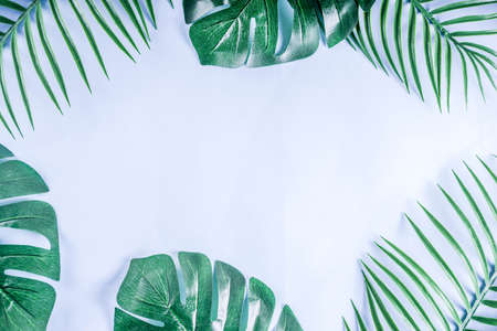 Tropical background. Palm and monstera leaves on yellow blue  background. Flatlay, top view, minimal layout, summer concept