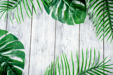 Tropical background. Palm and monstera leaves on wooden grey background. Flatlay, top view, minimal layout, summer concept Banco de Imagens