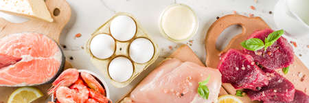Animal protein sources - raw beef meat steak, chicken breast fillet, salmon fish, eggs, dairy milk, shrimps, cheese, copy space banner