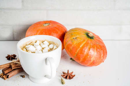 Spicy pumpkin coffee latte, autumn hot drink glass cup, with pumpkins, cinnamon and spices on white marble background copy space
