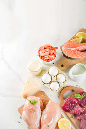 Animal protein sources - raw beef meat steak, chicken breast fillet, salmon fish, eggs, dairy milk, shrimps, cheese, copy space