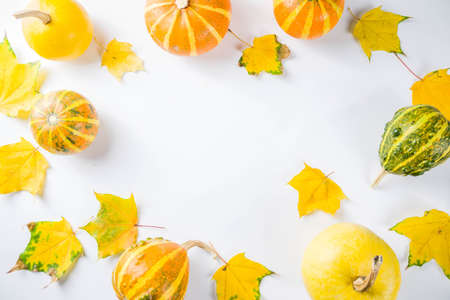 Autumn background creative layout with decorative small pumpkins, yellow autumn leaves. Flat-lay on a white background, top view copy space Foto de archivo - 126646704