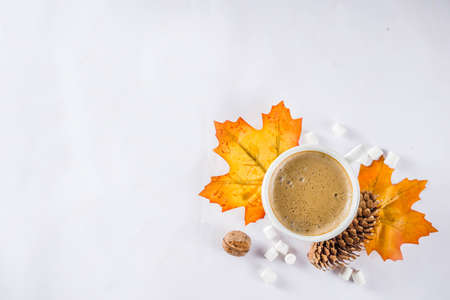 Autumn composition concept background. Cappuccino coffee or hot chocolate cup, with autumn bright leaves, pine cones, marshmallows. Flatlay on white background, simple top view pattern