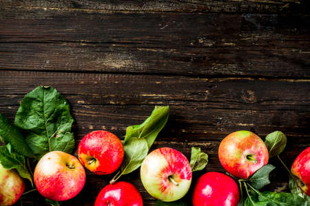 Autumn organic homemade apples, with leaves, on a wooden rustic table Reklamní fotografie