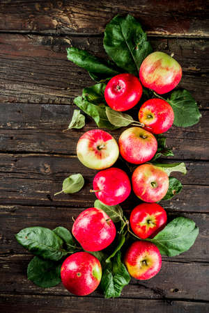 Autumn organic homemade apples, with leaves, on a wooden rustic table Reklamní fotografie - 128247015