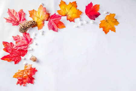 Simple autumn red yellow orange leaves pattern, flatlay top view Imagens