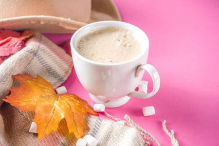 Autumn composition concept background. Cappuccino hot chocolate cup, with autumn bright leaves, pine cones, marshmallows, felt hat and blanket. Flatlay on pink trendy background, top view pattern 스톡 콘텐츠