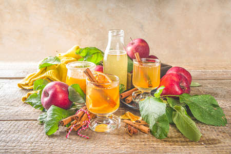 Traditional autumn winter alcohol drink. Hot and spicy apple cider. Stock Photo