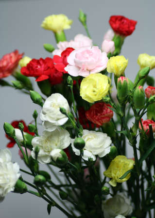 A bouquet with carnations in different colors