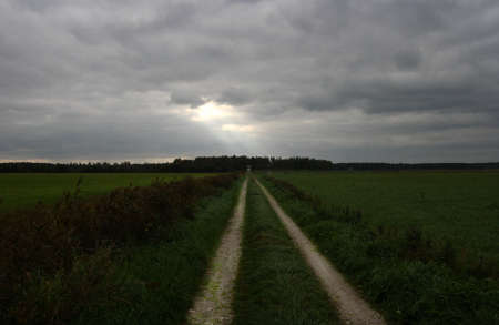 A small country road that leads to the light