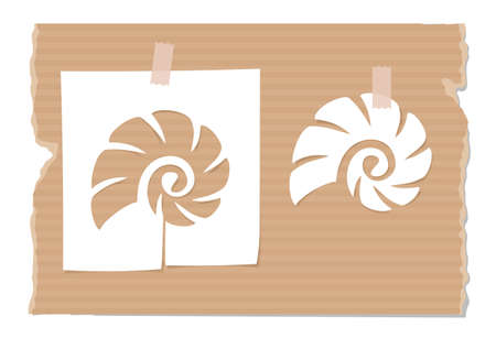 Silhouette of cockle shell cut out from paper on cardboard