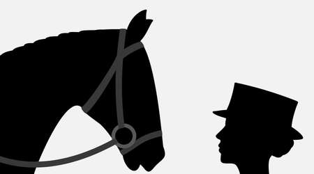 silhouettes of horse and woman jockey