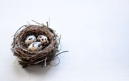 a nest with three quail eggs on a business table Imagens