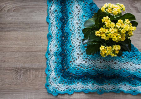 background tree flower kalandiva yellow bactus shawl crocheted azure blue blue sectional dyeing mohair merino wool acrylic yarn Stock Photo
