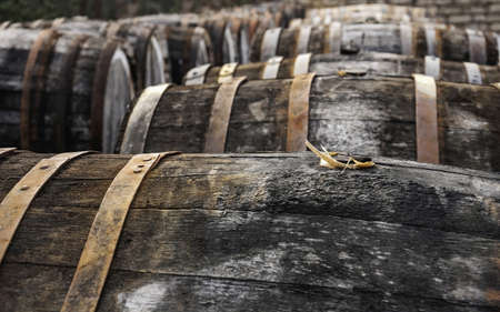 open air picture of oak casks with madeira wine while maderization on sorarium photo