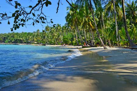 timeless: tropical beach view