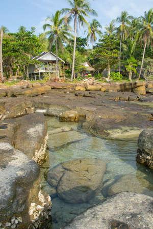 timeless: tropical resort beach view