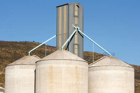 concrete grain silos filled with wheat