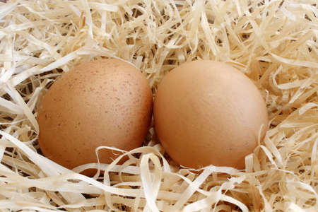two fresh eggs lying in some hay Stock Photo - 2995217