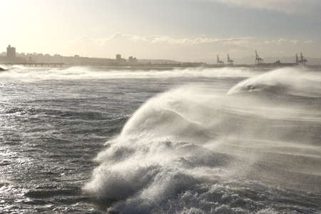 rough sea: dramatic huge waves blown by strong winds