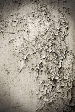 small bits of flaking paint on a old abandoned house wall photo