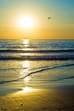 sunrise ocean: Beautiful sunrise over the ocean on a winters morning at low tide