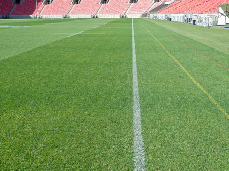 touchline: beautiful textured grass of a sports stadium with white field markings
