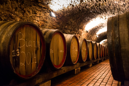 Old wooden barrels with wine in a wine vault, aged traditional wooden vine barrels lined up in cool and dark vine cellar, Italy, Porto, Portugal, France Stock Photo