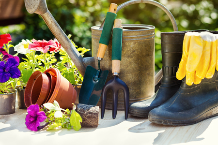 Gardening tools and flowers on the terrace in the garden. Watering can, rubber boots, garden tools, flowers, vases, pots, rubber gloves. Gardening composition. Stock Photo
