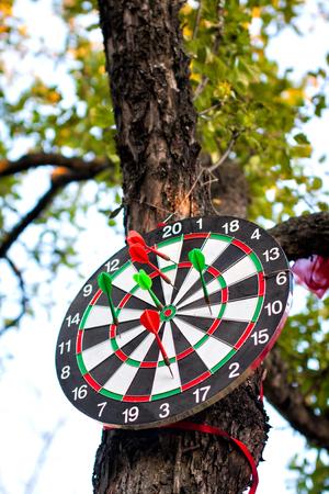 holed: dartboard hanging on tree